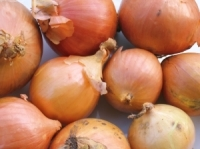Sow onion seeds this week